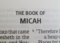 Micah 7 predictions for end time bible prophecy
