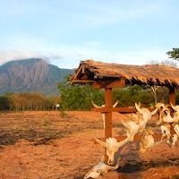 baluran - Referensi Tempat Wisata di Banyuwangi