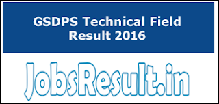 GSDPS Technical Field Result 2016