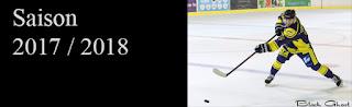 http://blackghhost-sport.blogspot.fr/2017/12/sommaire-hockey-sur-glace-d2-saison.html