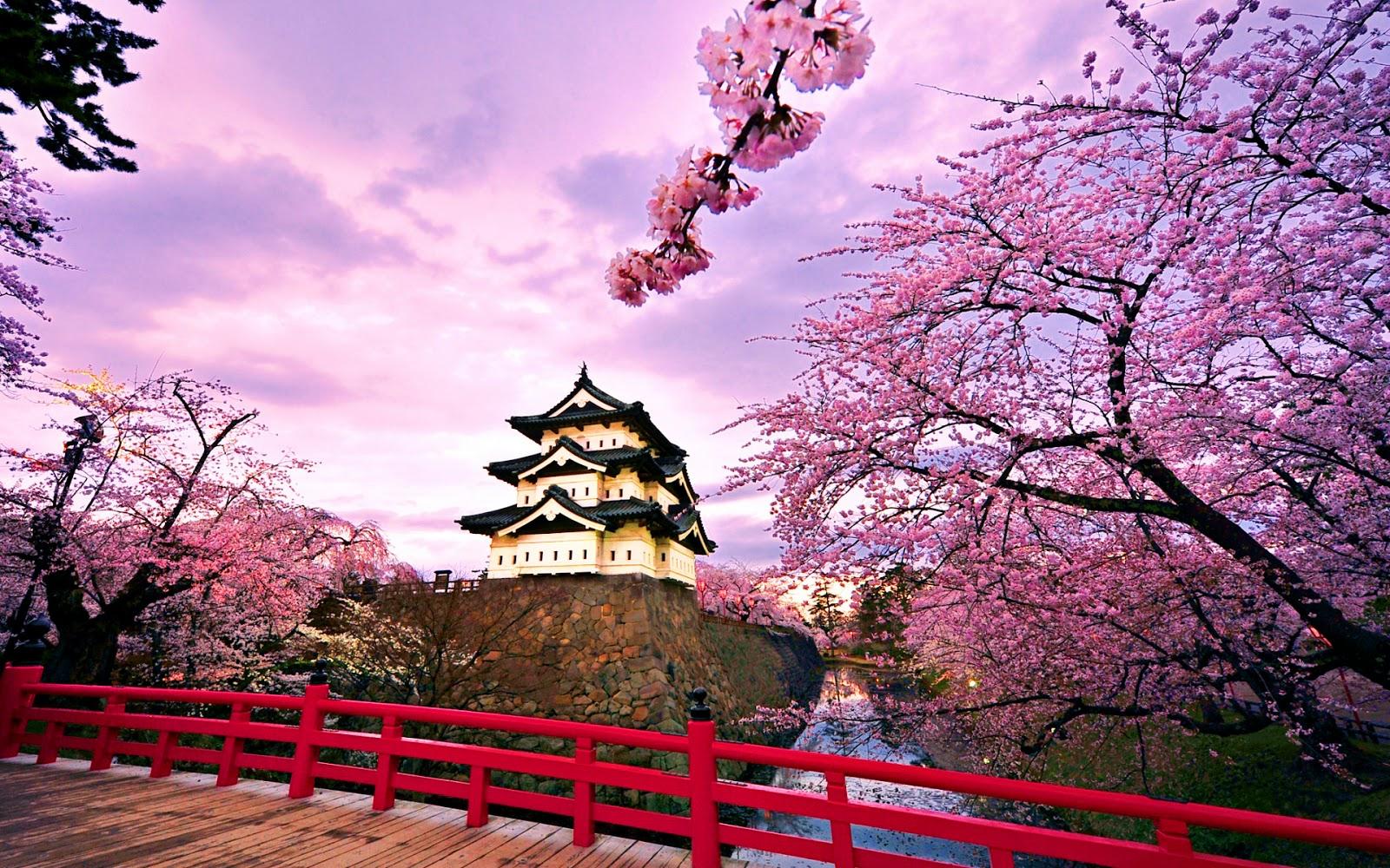 Ini 16 Taman Taman Terbaik Di Negeri Sakura Jepang Semoga