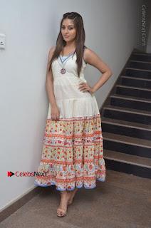 Telugu Actress Anu Emmanuel New Stills in Beautiful White Long Dress  0101.JPG