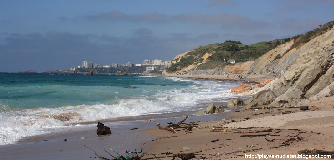 Aquitane nudist beach