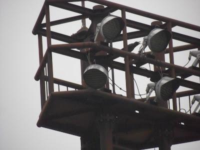 高速道路SA照明塔のカラス