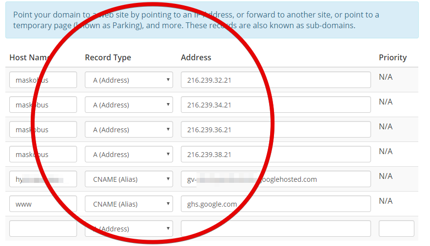 setting A record domain