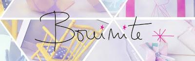 bouinite, blog, blogueuse, nantes, bannière, la perle des loisirs