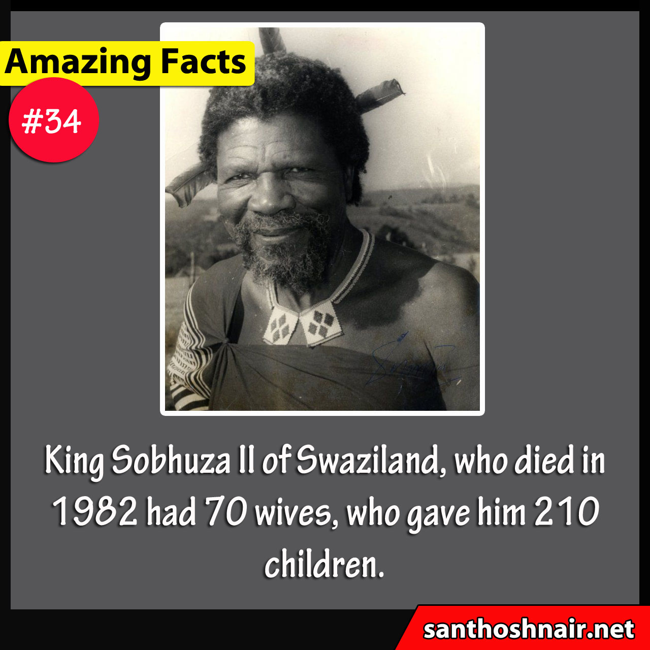 Amazing Facts #33 - King Sobhuza II