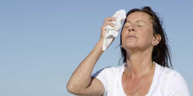 menos bochornos en la menopausia