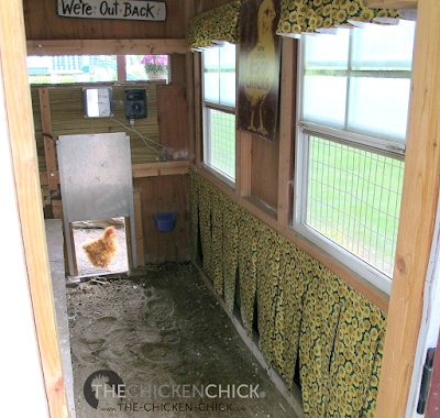 Use sand in the run- it stays cooler than any other litter choice and provides ample opportunity for dust-bathing, which is another mechanism chickens use to cool themselves.