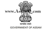 DLSA, Shivsagar AA/DEO Recruitment 2018 Govt of Assam