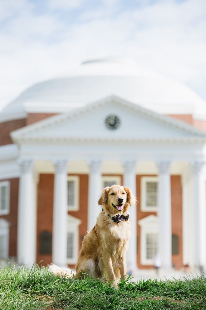 Notes from Peabody: The UVA Application Process: 2019