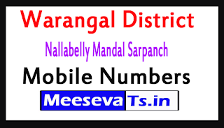 Nallabelly Mandal Sarpanch Mobile Numbers List Warangal District in Telangana State