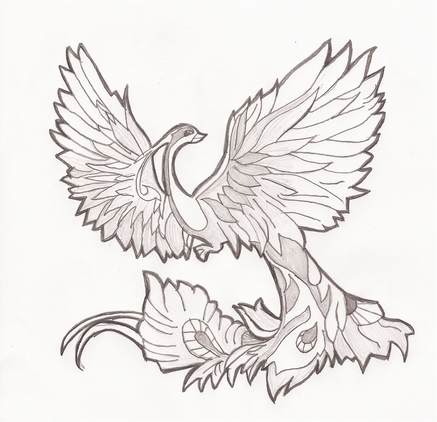 Creative Outlet Phoenix Drawing
