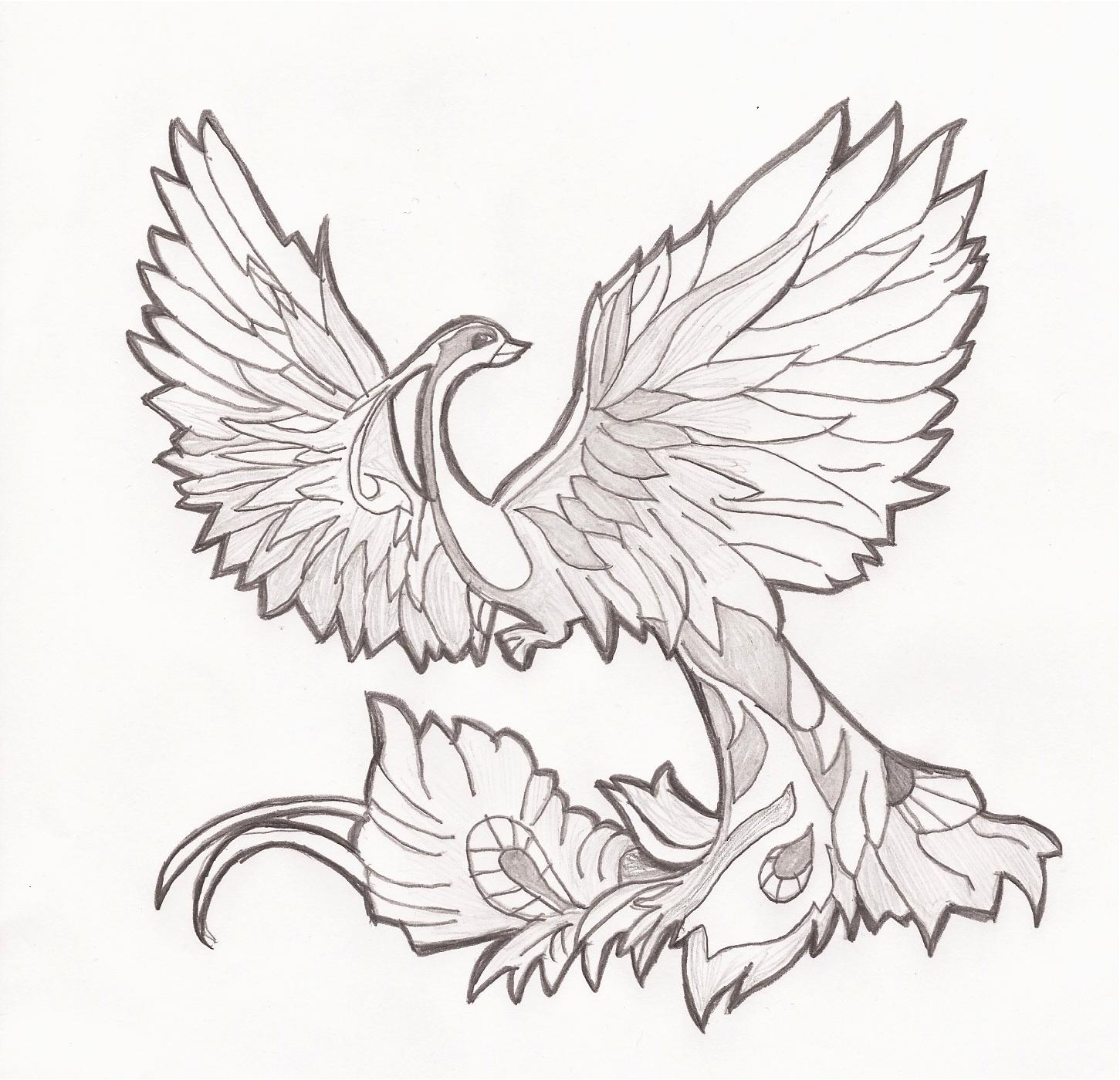 Птица феникс картинки рисовать, дню влюбленных