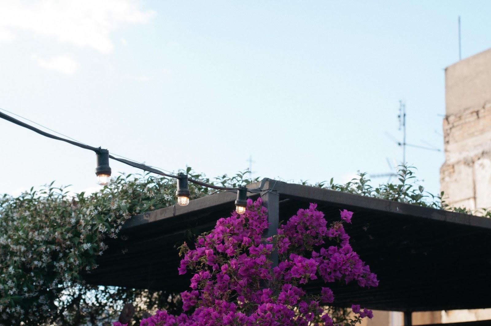 Hotel Neri terraza Roba Estesa
