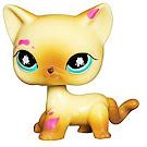 Littlest Pet Shop Pet Pairs Cat (#816) Pet