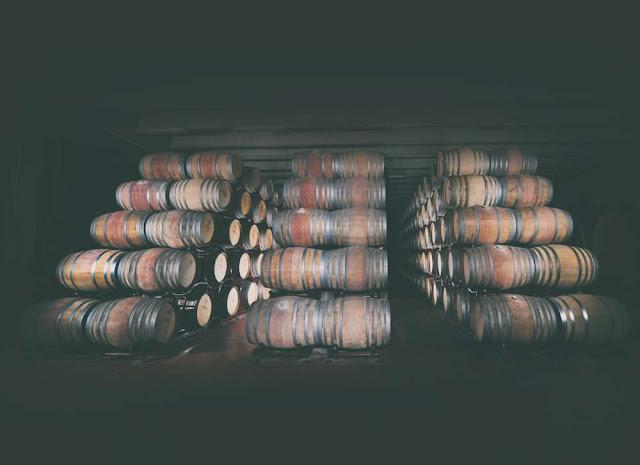 Winemaking in Puglia with Conti Zecca
