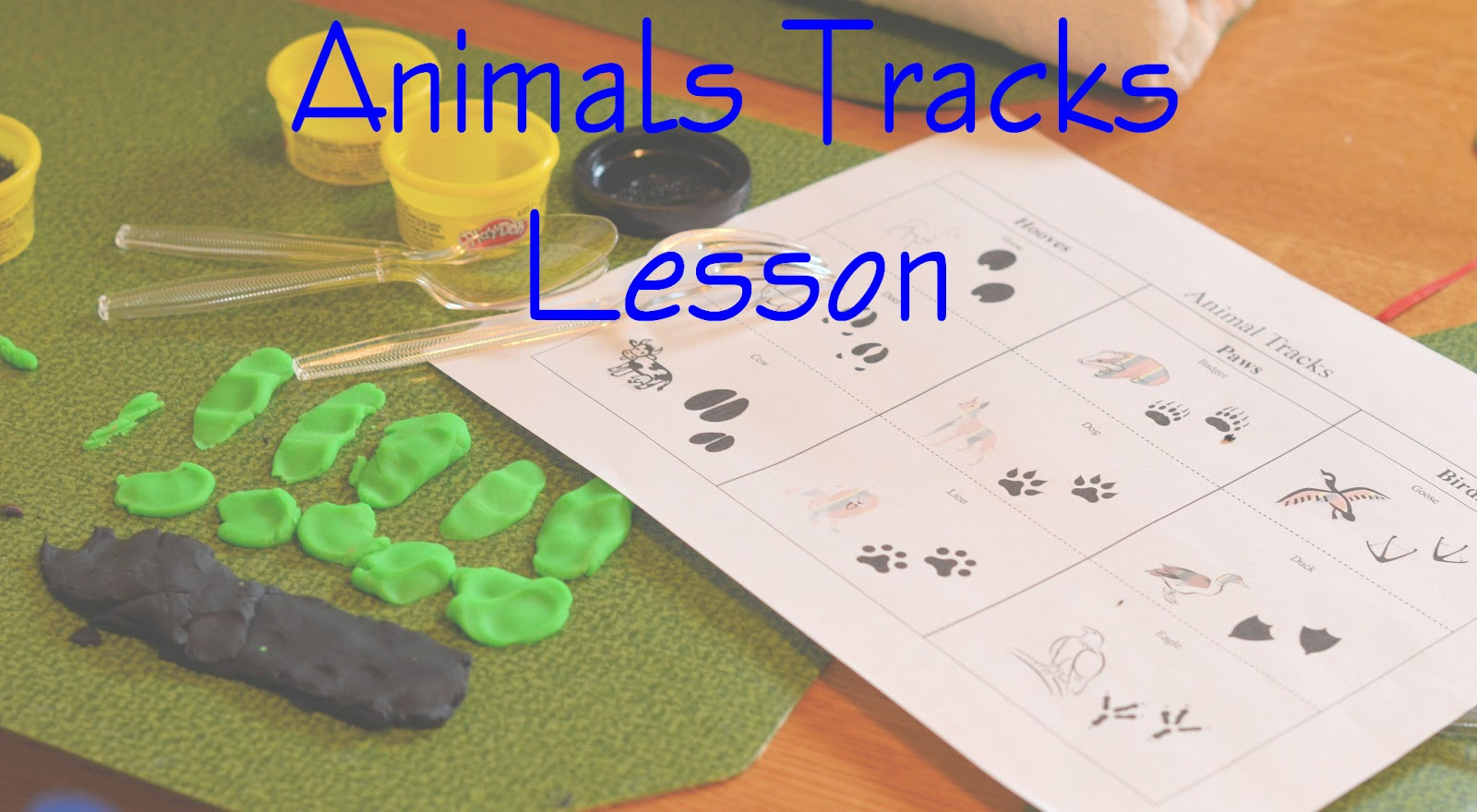Leading Them To The Rock Animal Study Animal Tracks