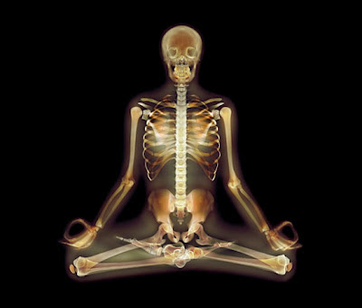 xray yoga  science storiented