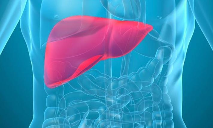 Obat Alami Penyakit Liver, Sebarkan Info Ini