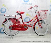 20 Inch Exotic ET-9788 City Bike