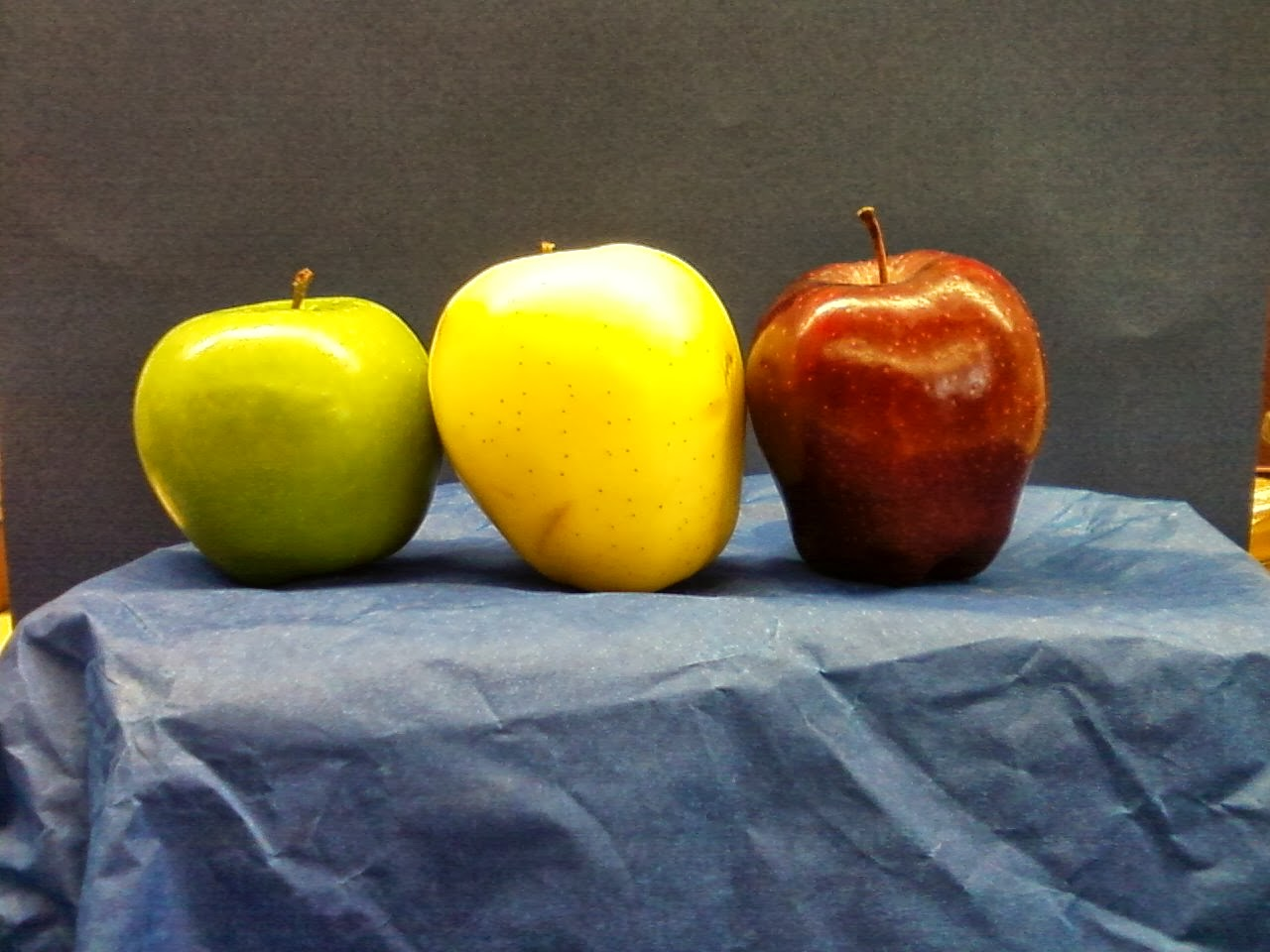 Ppps Elementary Art Rooms Apple Still Life Composition