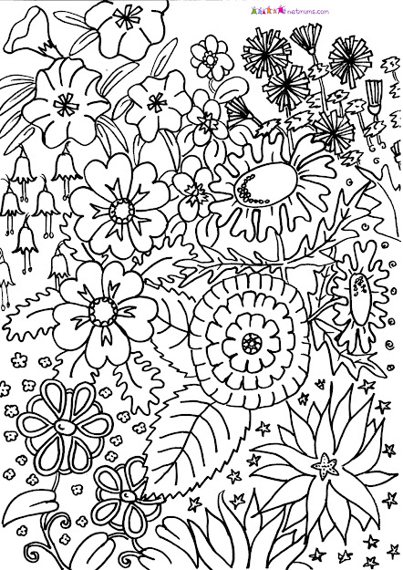 Difficult Flower Coloring Pages  Source  Adult Coloring Pages On Hard  Fairy