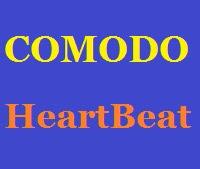 HeartBeat nedir ?