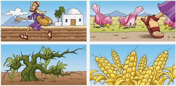 Resultado de imagen para parábola del sembrador