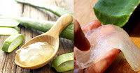 https://steviaven.blogspot.com/2018/06/usos-del-aloe-vera-en-tratamientos-medicinales.html