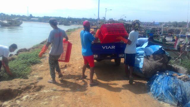 Gerakan Bersih-Bersih Pantai UPT P2SKP Bulu bersama Pemuda Pesisir