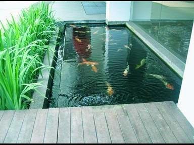 cara membuat kolam ikan minimalis batu alam   tips membuat