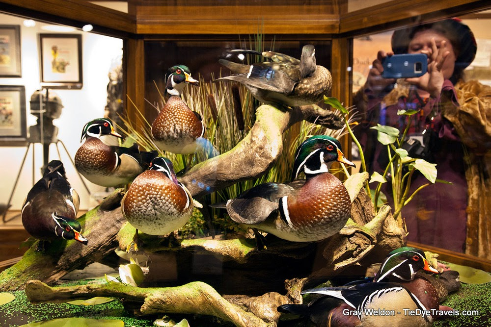 Inside Bass Pro At The Pyramid A Massive Cacaphony Of