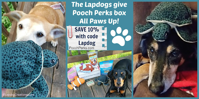 The Lapdogs give #PoochPerks ALL PAWS UP! Start pampering your pooch and SAVE 10% off with our #coupon LAPDOG when you check out.  #DogSubscriptionBox #LapdogCreations ©LapdogCreations
