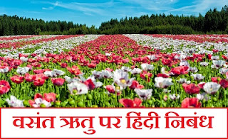 Essay on Spring Season in Hindi