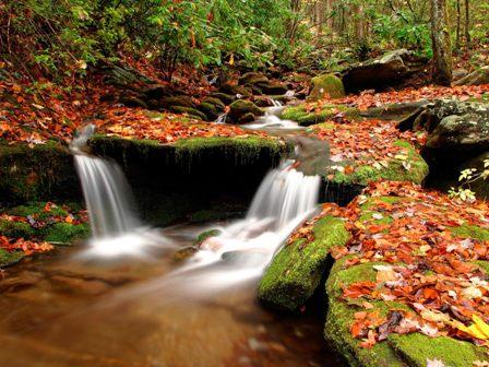 Top 10 Best Beautiful Nature Desktop Wallpapers Free Download - Top 10 Best Wallpapers