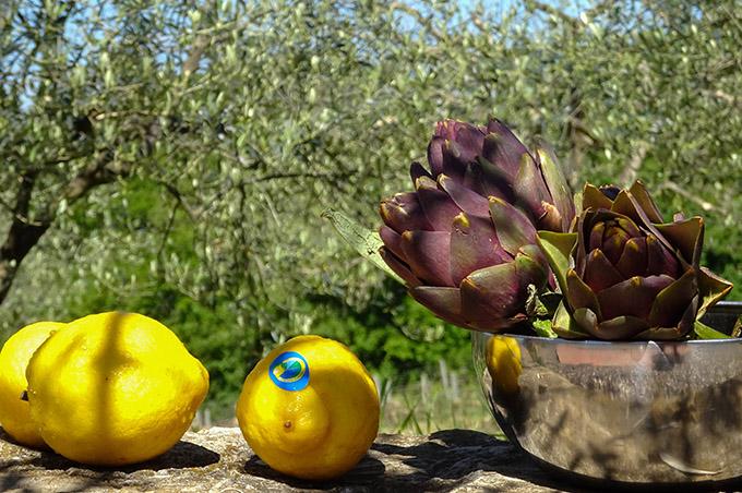 Zitronen und Artischocken