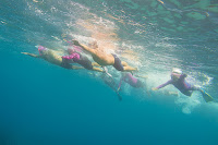 http://www.tropicallight.com/swim1/15jul18sm/15jul18sm.html