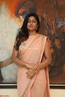 Eesha Rebba in beautiful peach saree at Darshakudu pre release ~  Exclusive Celebrities Galleries 046.JPG