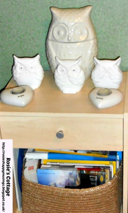 New home for adorable owls