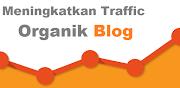 Cara Meningkatkan Traffic Organik Blog
