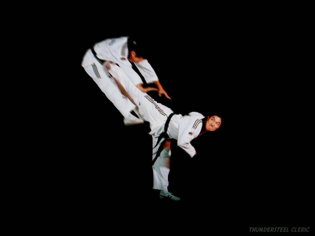 حركات تايكوندو ممتازه فديو