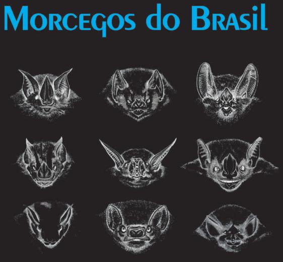 morcegos-brazil-brasil-livro-espécies-bats-bat-species