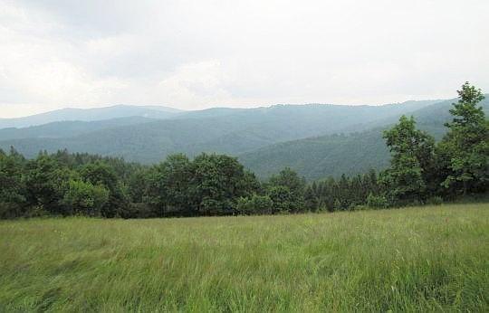 Panorama z Potrójnej na wschodni grzbiet Beskidu Małego.