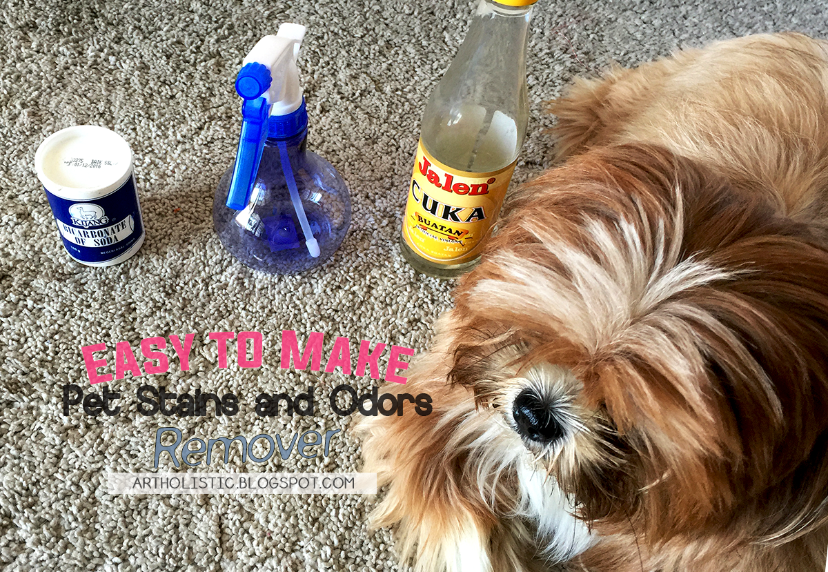 Homemade Pet Stain And Odor Remover Mycoffeepot Org