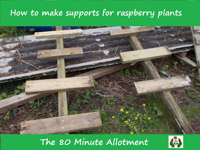 How to make supports for raspberry plants The 80 Minute Allotment Green Fingered Blog