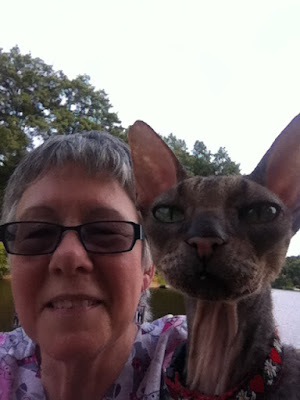 Cornish Rex Selfie with Teri