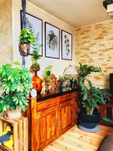 Jak wprowadzić styl urban jungle do wnętrza? Natura w motywie i doniczkach.