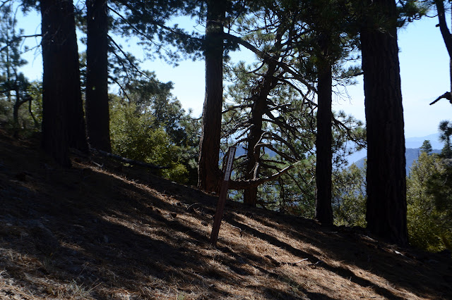 slapstick indicating wilderness