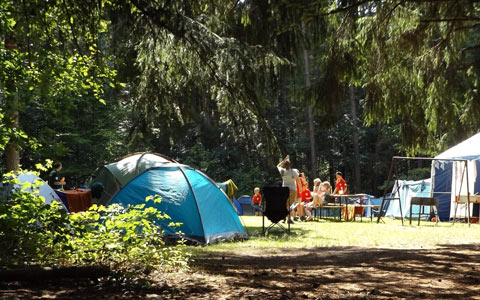 Camping and forest preservation wildfire prevention